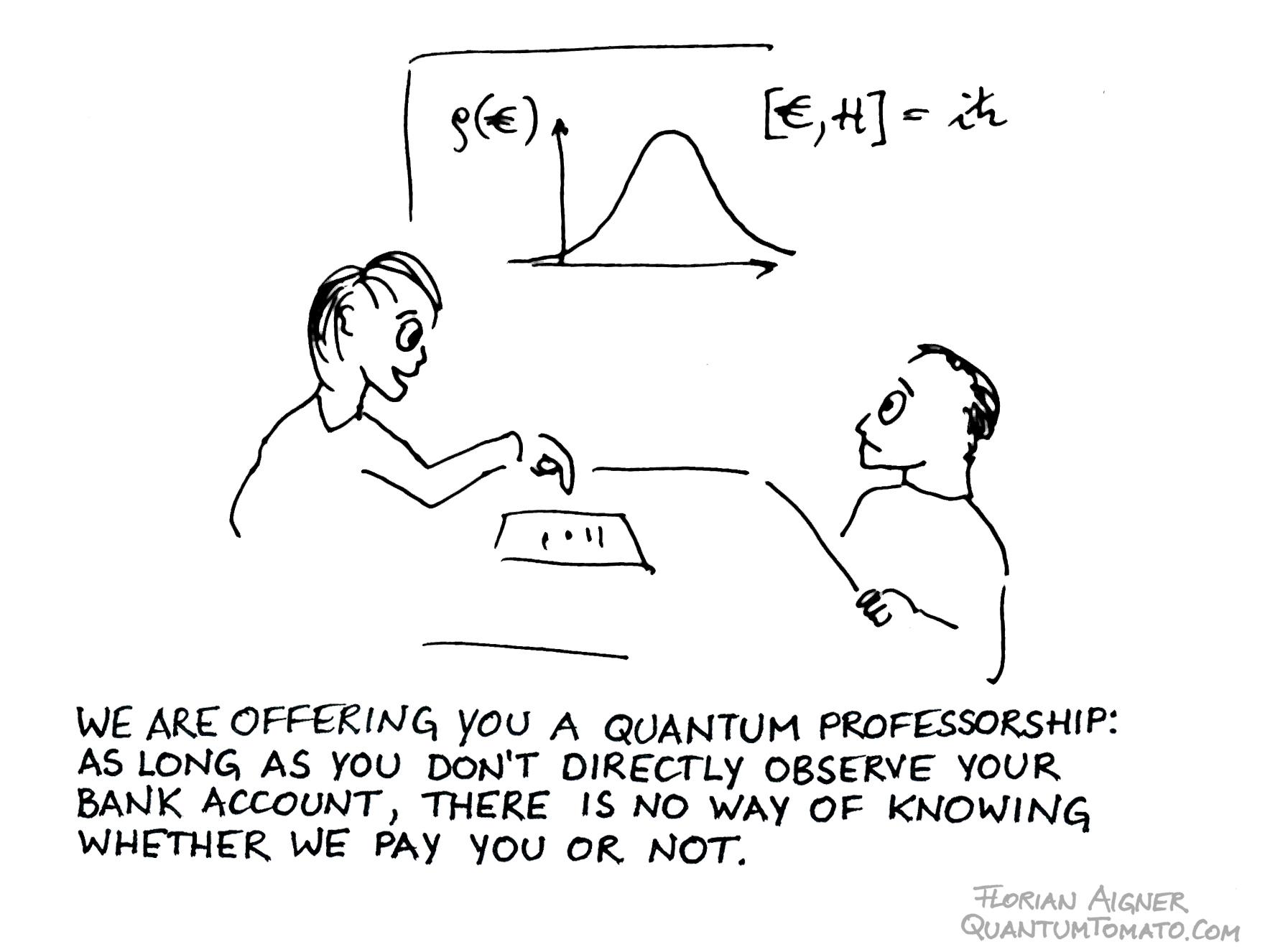 quantum professorship